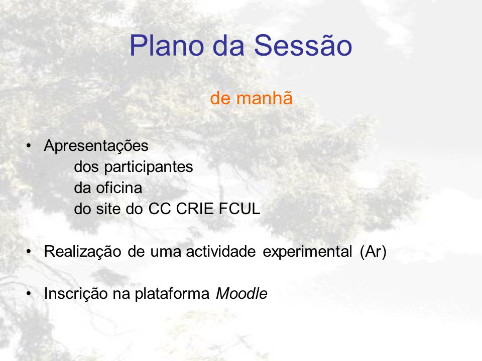 Plano da Sessão de manhã Apresentações dos participantes da oficina