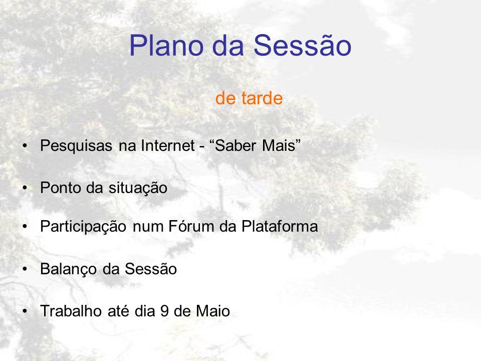 Plano da Sessão de tarde Pesquisas na Internet - Saber Mais
