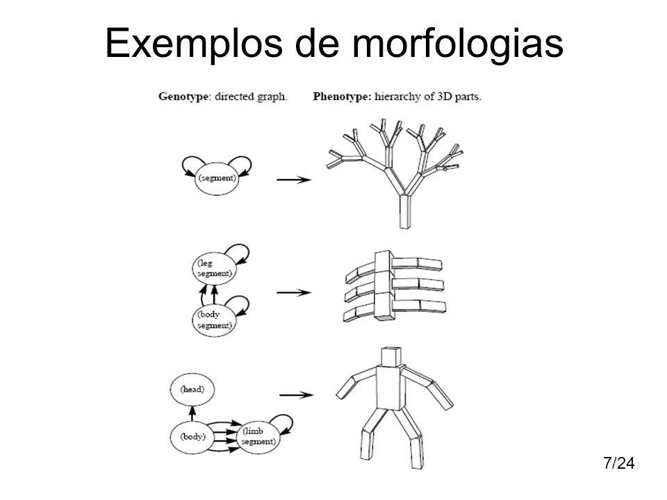 Exemplos de morfologias
