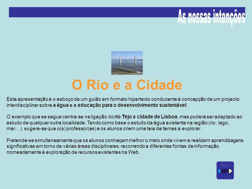 O Rio e a Cidade As nossas intenções