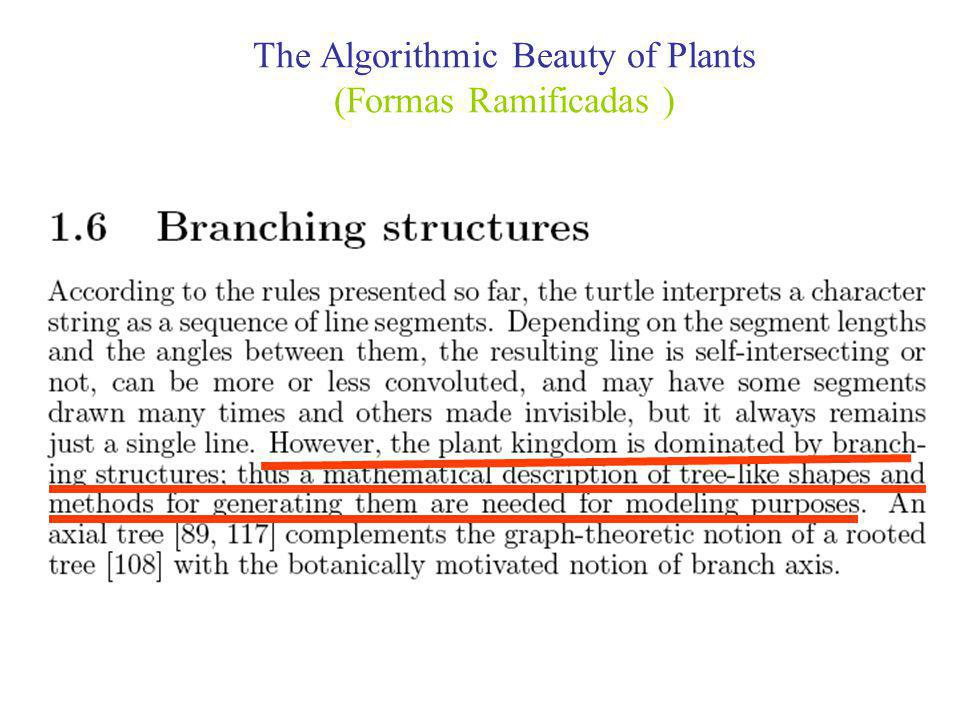 The Algorithmic Beauty of Plants (Formas Ramificadas )