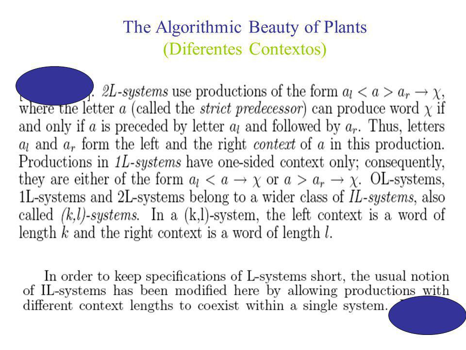 The Algorithmic Beauty of Plants (Diferentes Contextos)
