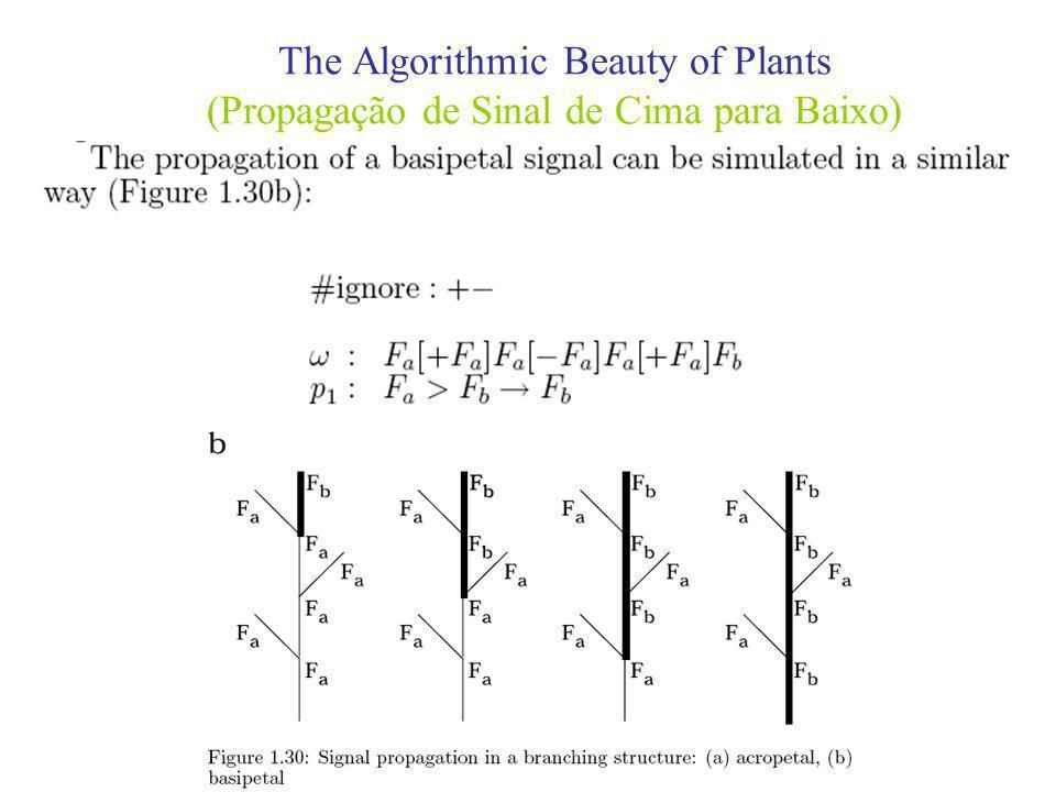 The Algorithmic Beauty of Plants (Propagação de Sinal de Cima para Baixo)