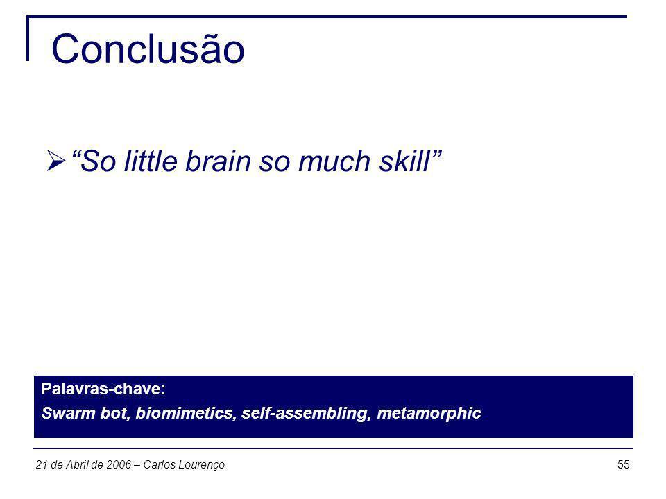 Conclusão So little brain so much skill Palavras-chave: