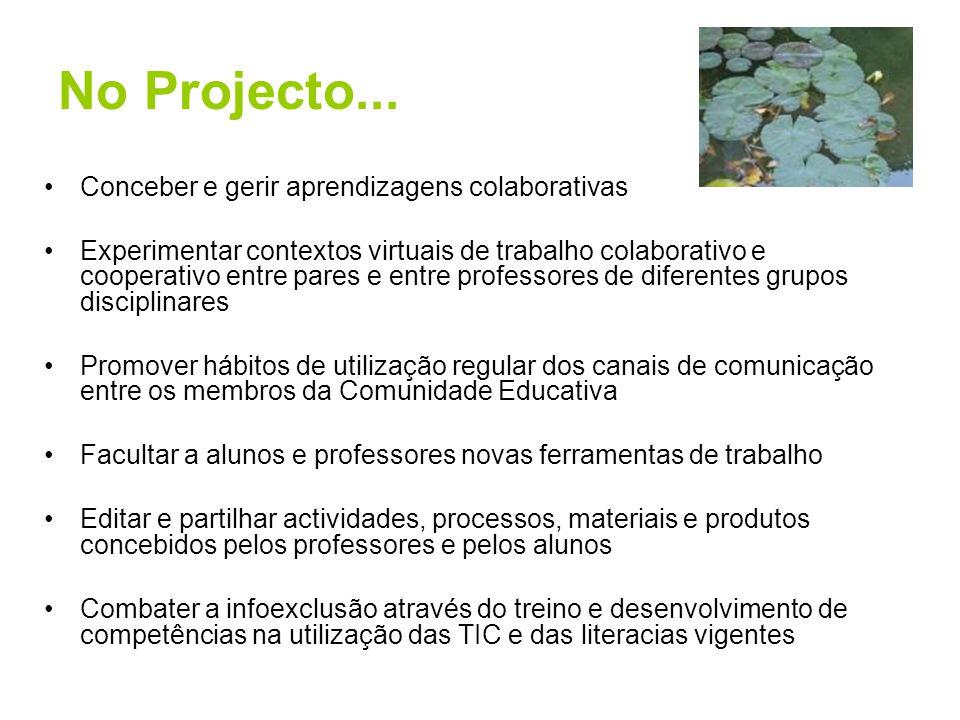 No Projecto... Conceber e gerir aprendizagens colaborativas