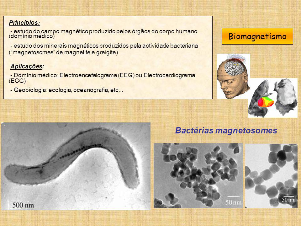 Bactérias magnetosomes