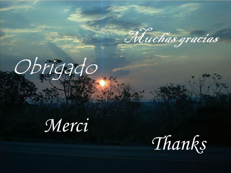 Muchas gracias Obrigado Merci Thanks