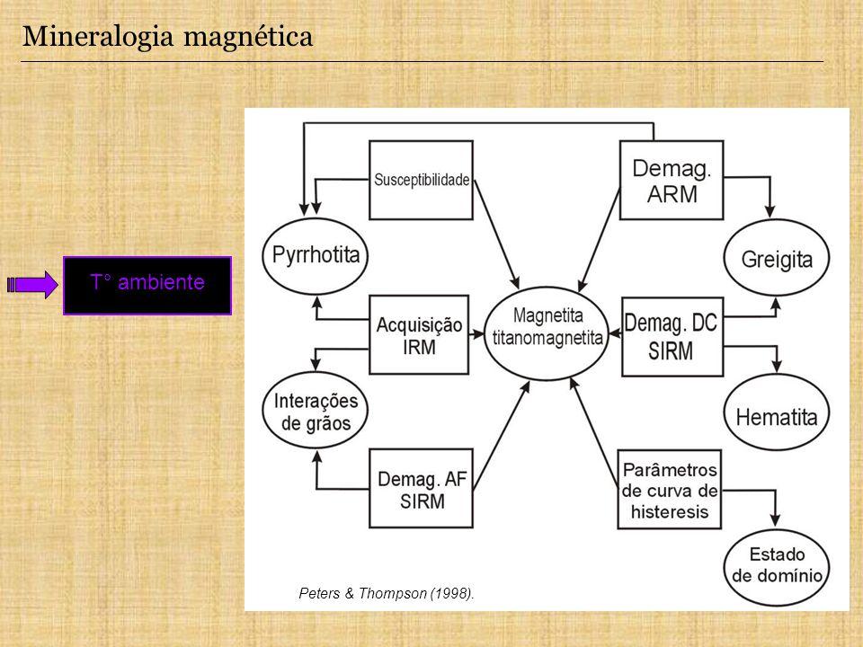 Mineralogia magnética