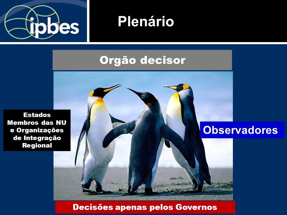 Plenário Orgão decisor Observadores Decisões apenas pelos Governos