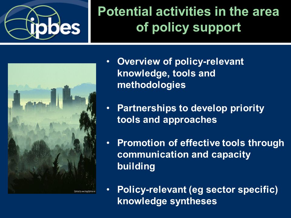 Potential activities in the area of policy support