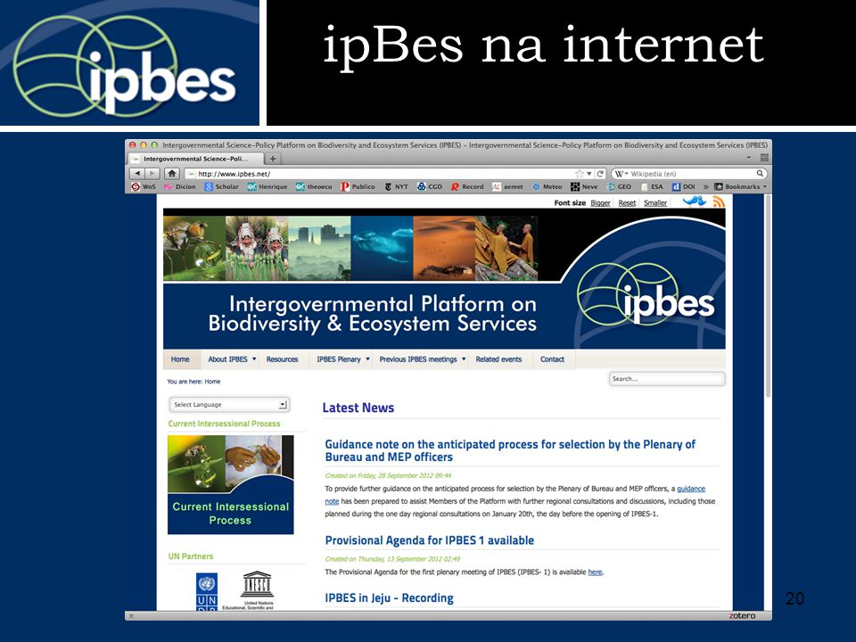 ipBes na internet