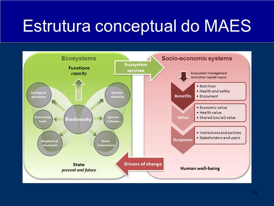 Estrutura conceptual do MAES