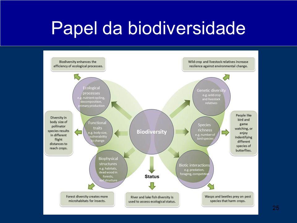 Papel da biodiversidade