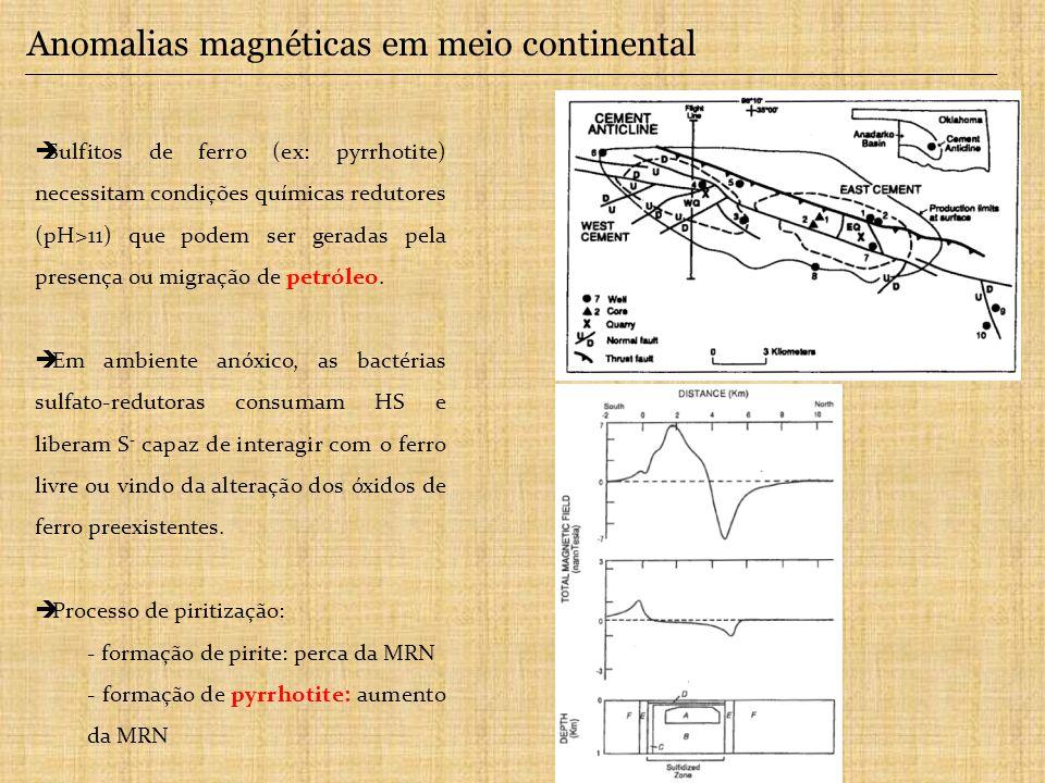 Anomalias magnéticas em meio continental