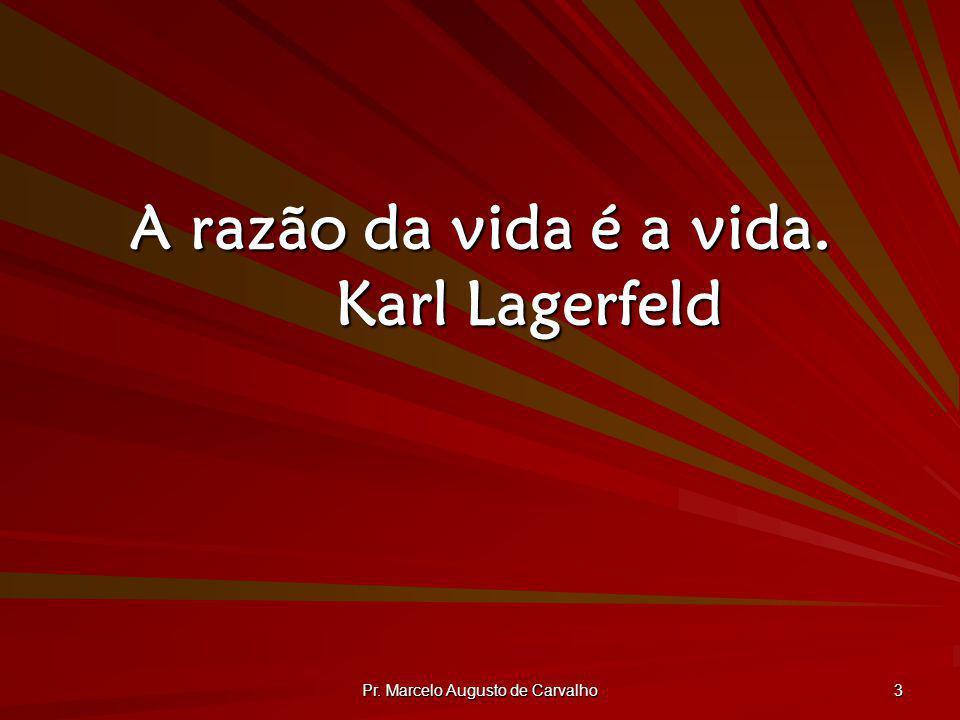 A razão da vida é a vida. Karl Lagerfeld