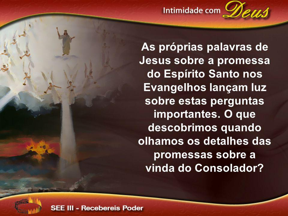As próprias palavras de Jesus sobre a promessa do Espírito Santo nos Evangelhos lançam luz sobre estas perguntas importantes.