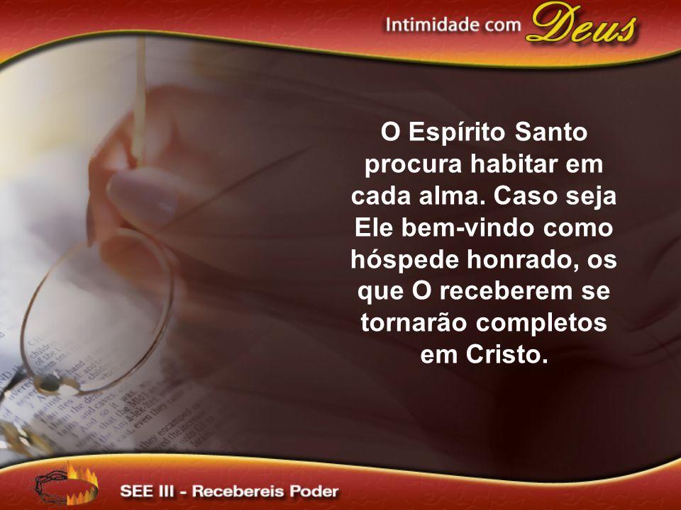 O Espírito Santo procura habitar em cada alma