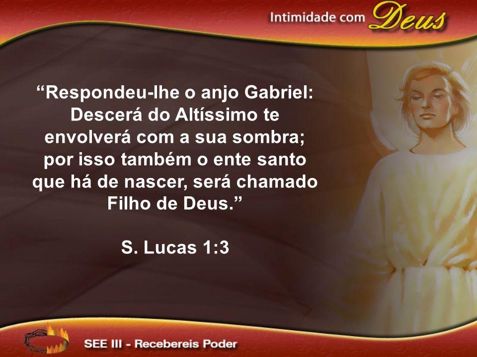 Respondeu-lhe o anjo Gabriel: Descerá do Altíssimo te envolverá com a sua sombra; por isso também o ente santo que há de nascer, será chamado Filho de Deus.