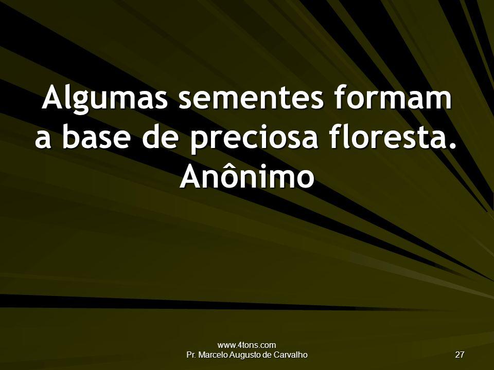 Algumas sementes formam a base de preciosa floresta. Anônimo