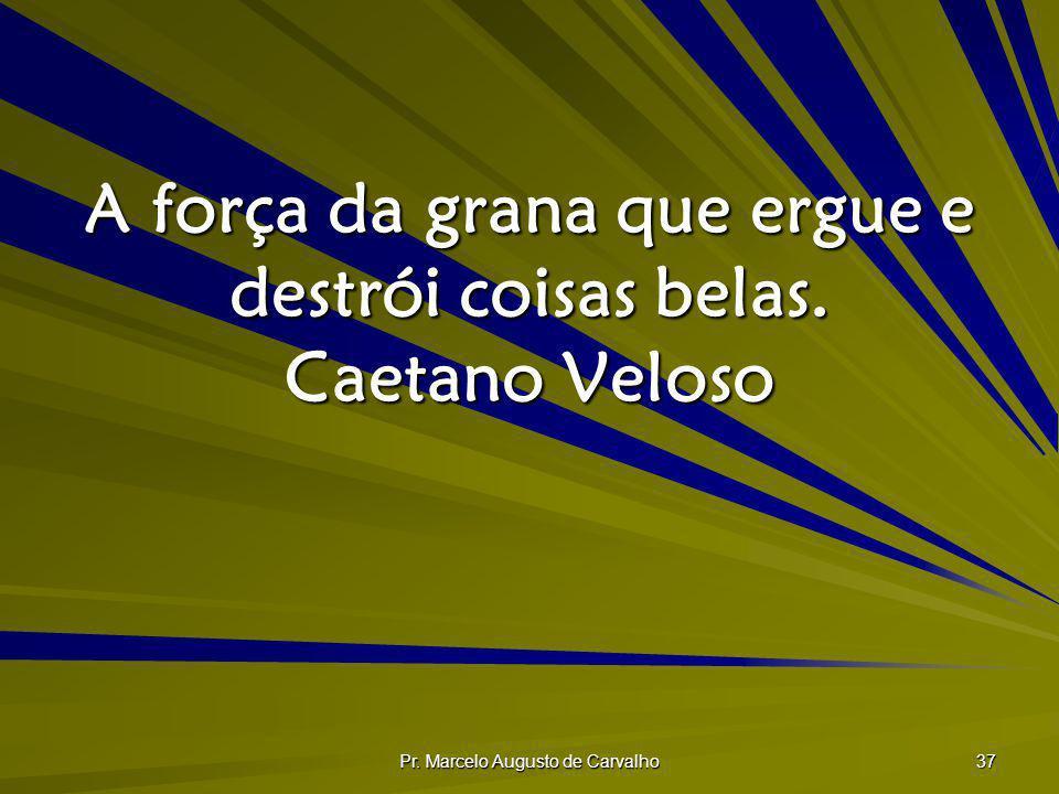 A força da grana que ergue e destrói coisas belas. Caetano Veloso