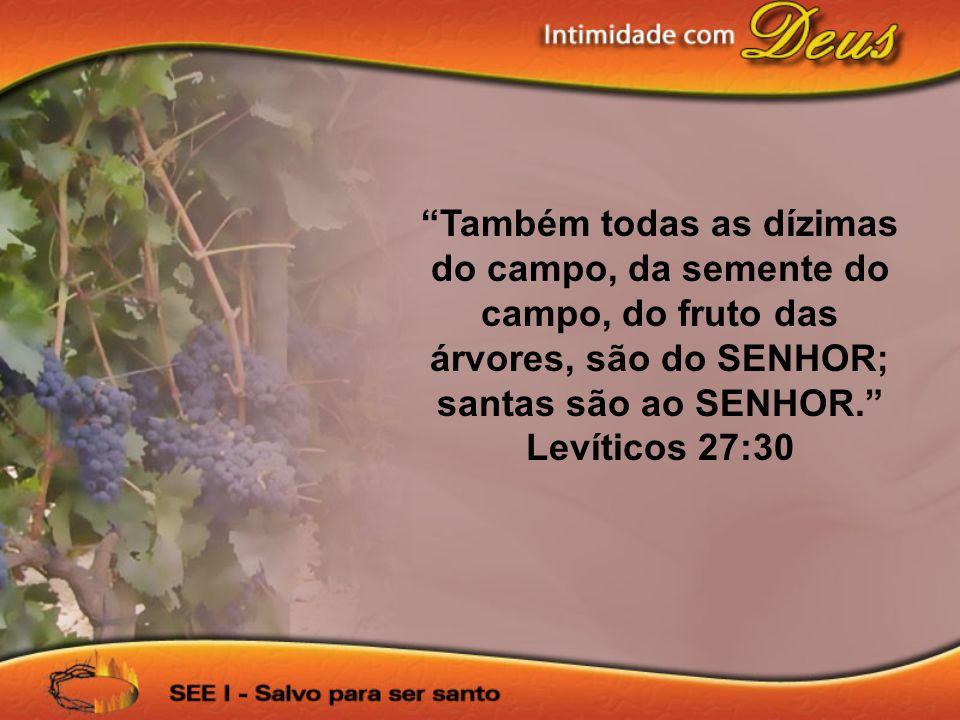 Também todas as dízimas do campo, da semente do campo, do fruto das árvores, são do SENHOR; santas são ao SENHOR.