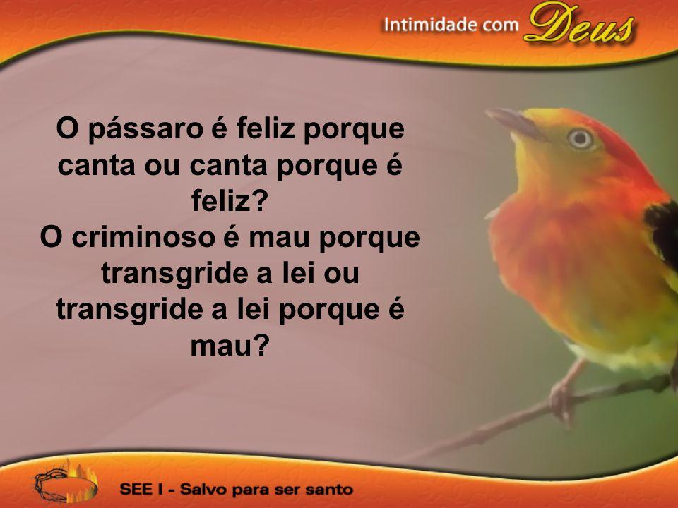 O pássaro é feliz porque canta ou canta porque é feliz
