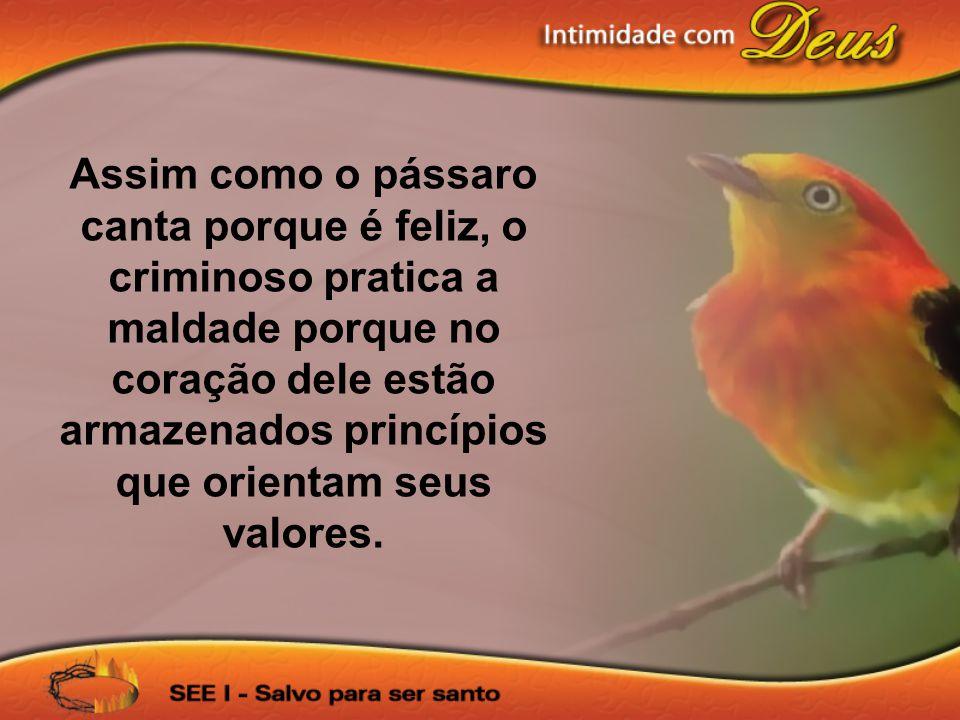 Assim como o pássaro canta porque é feliz, o criminoso pratica a maldade porque no coração dele estão armazenados princípios que orientam seus valores.