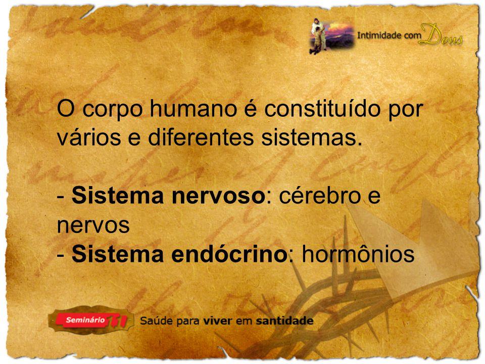 O corpo humano é constituído por vários e diferentes sistemas.