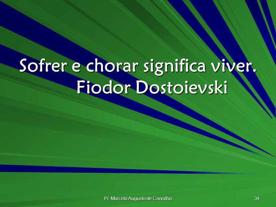 Sofrer e chorar significa viver. Fiodor Dostoievski