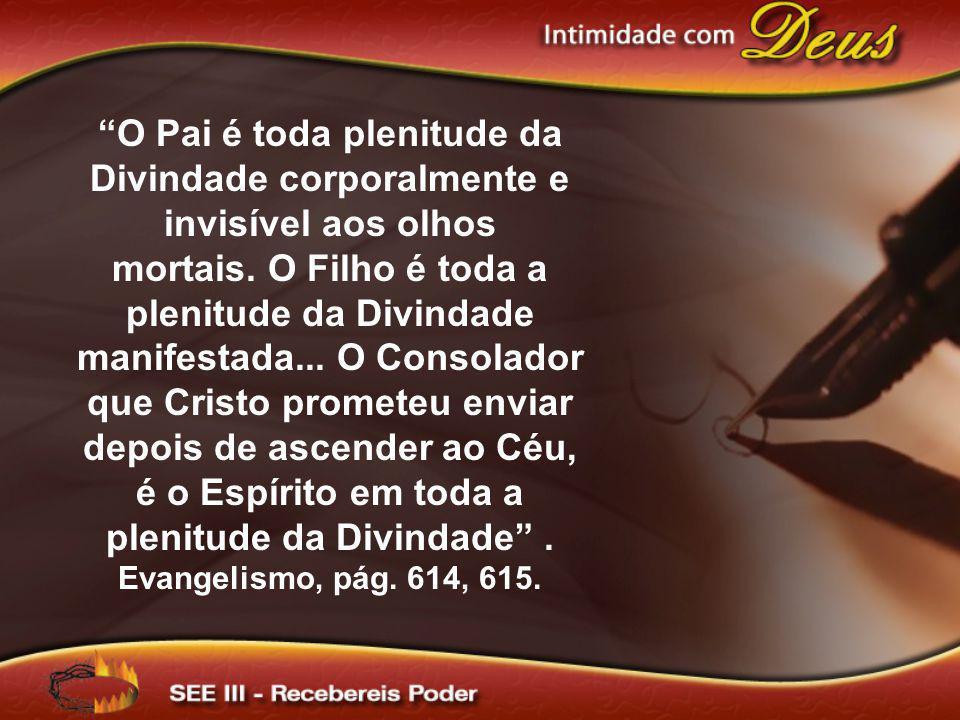O Pai é toda plenitude da Divindade corporalmente e invisível aos olhos