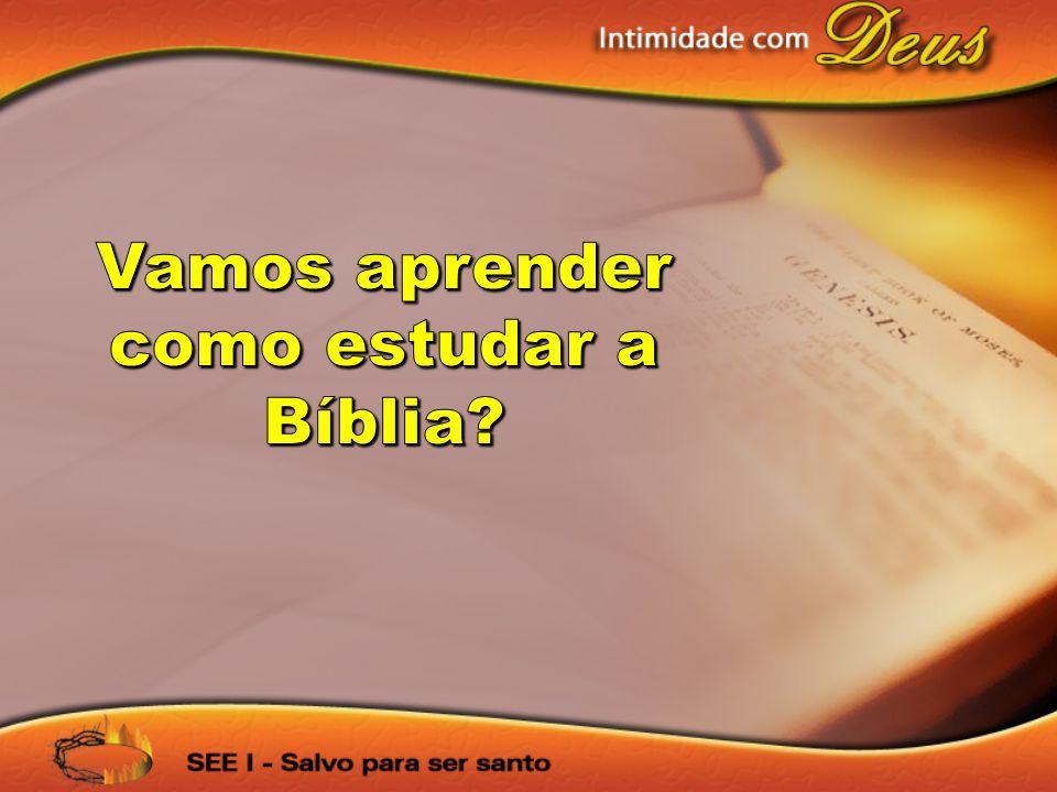 Vamos aprender como estudar a Bíblia