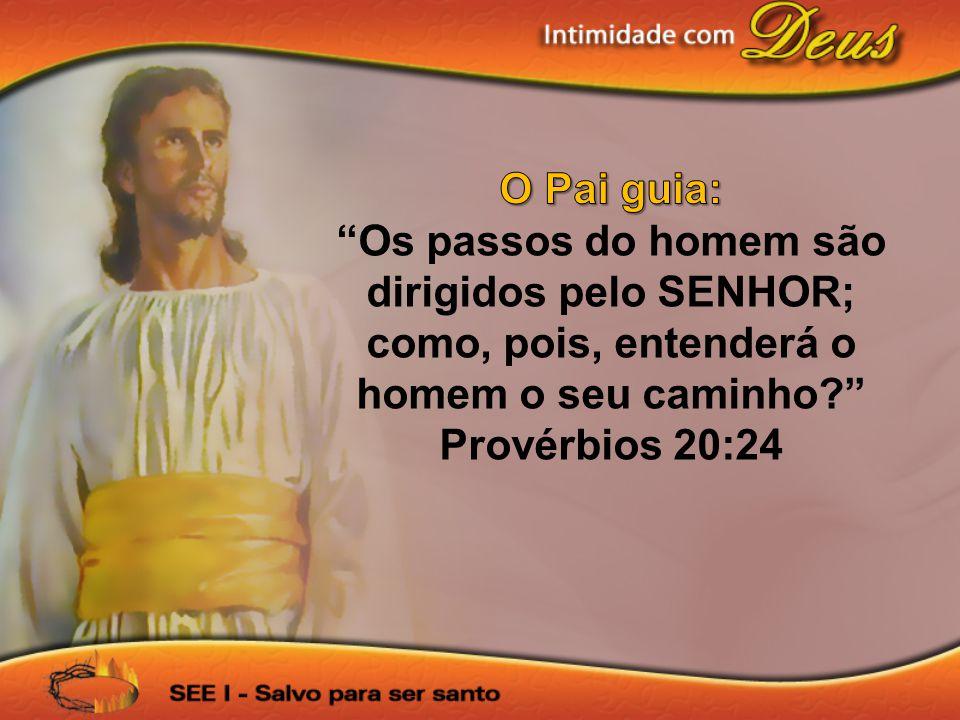 O Pai guia: Os passos do homem são dirigidos pelo SENHOR; como, pois, entenderá o homem o seu caminho Provérbios 20:24.