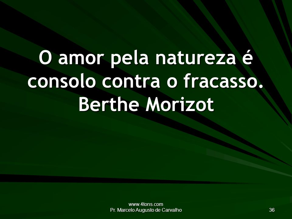 O amor pela natureza é consolo contra o fracasso. Berthe Morizot