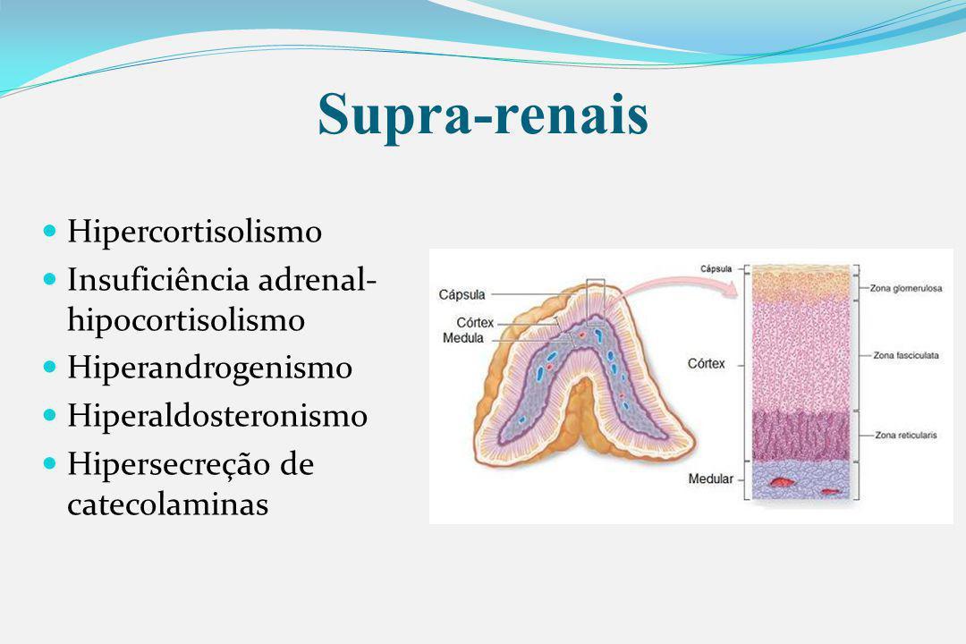 Supra-renais Hipercortisolismo Insuficiência adrenal-hipocortisolismo