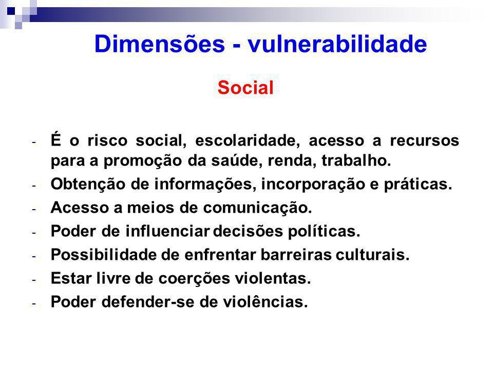 Dimensões - vulnerabilidade