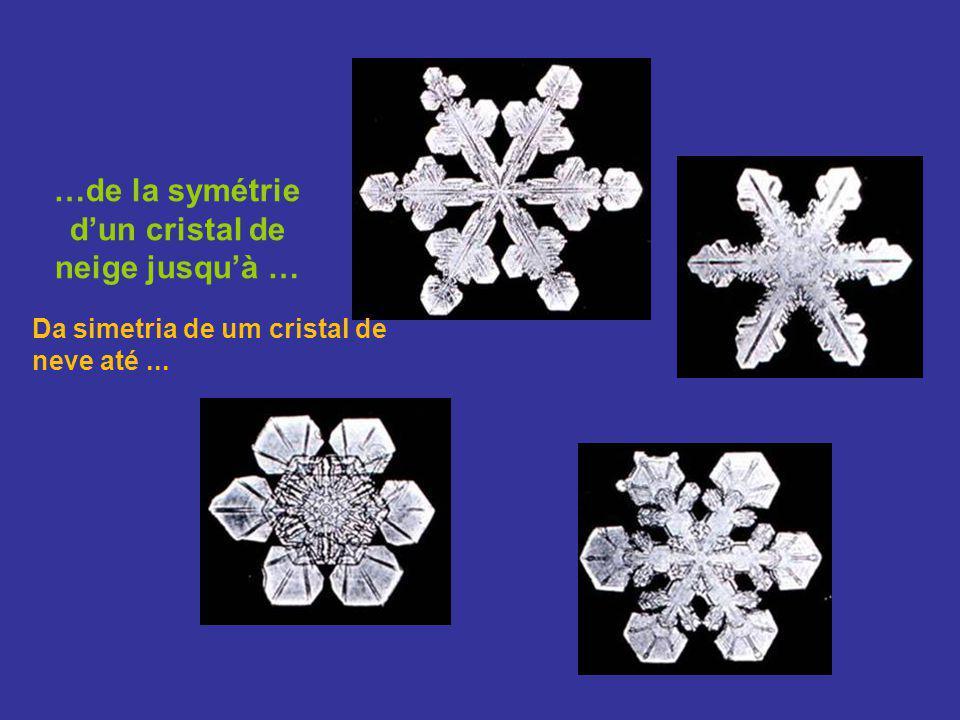 …de la symétrie d'un cristal de neige jusqu'à …