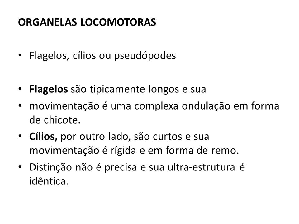 ORGANELAS LOCOMOTORAS