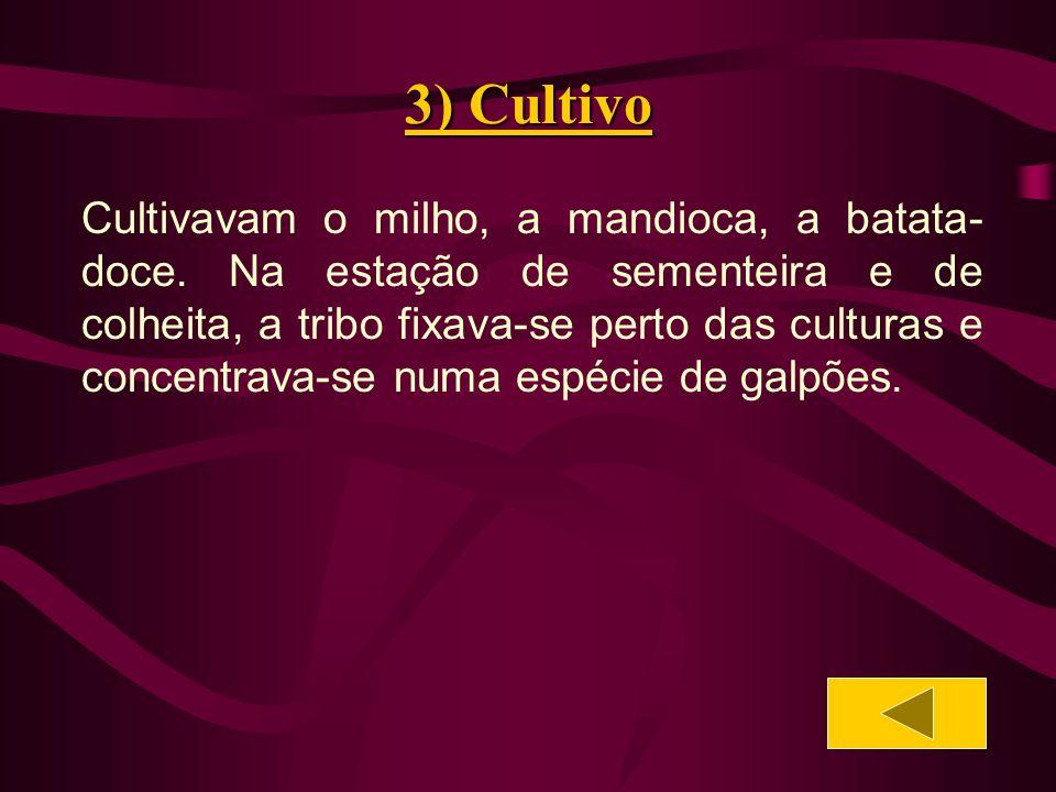 3) Cultivo