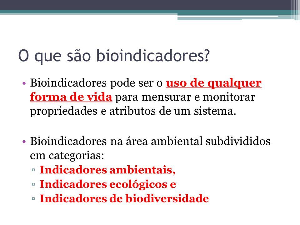 O que são bioindicadores