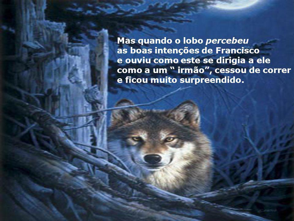 Mas quando o lobo percebeu