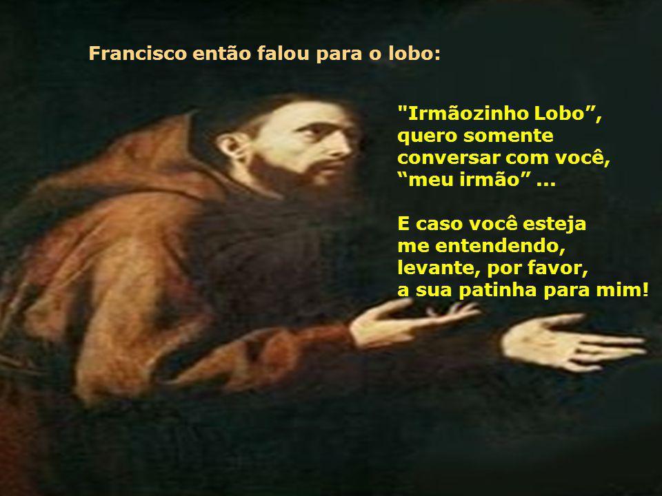 Francisco então falou para o lobo: