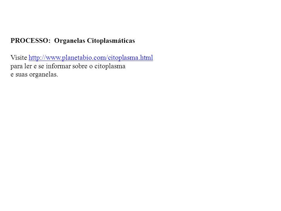 PROCESSO: Organelas Citoplasmáticas