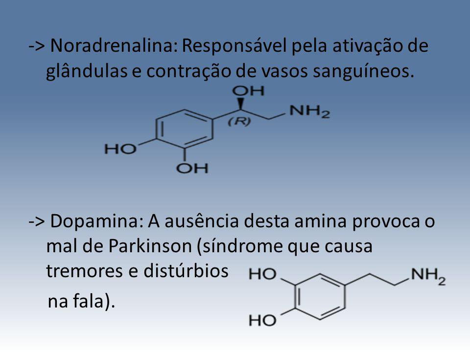 -> Noradrenalina: Responsável pela ativação de glândulas e contração de vasos sanguíneos.