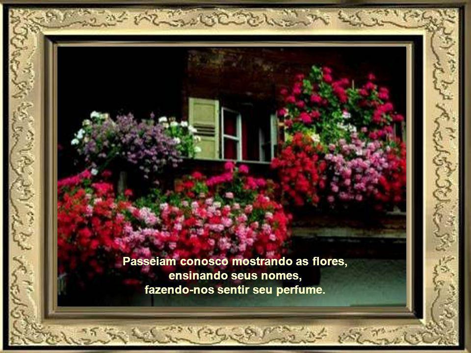 Passeiam conosco mostrando as flores, fazendo-nos sentir seu perfume.