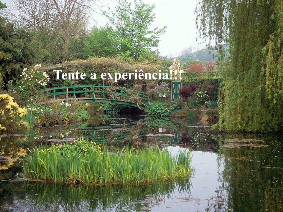 Tente a experiência!!!