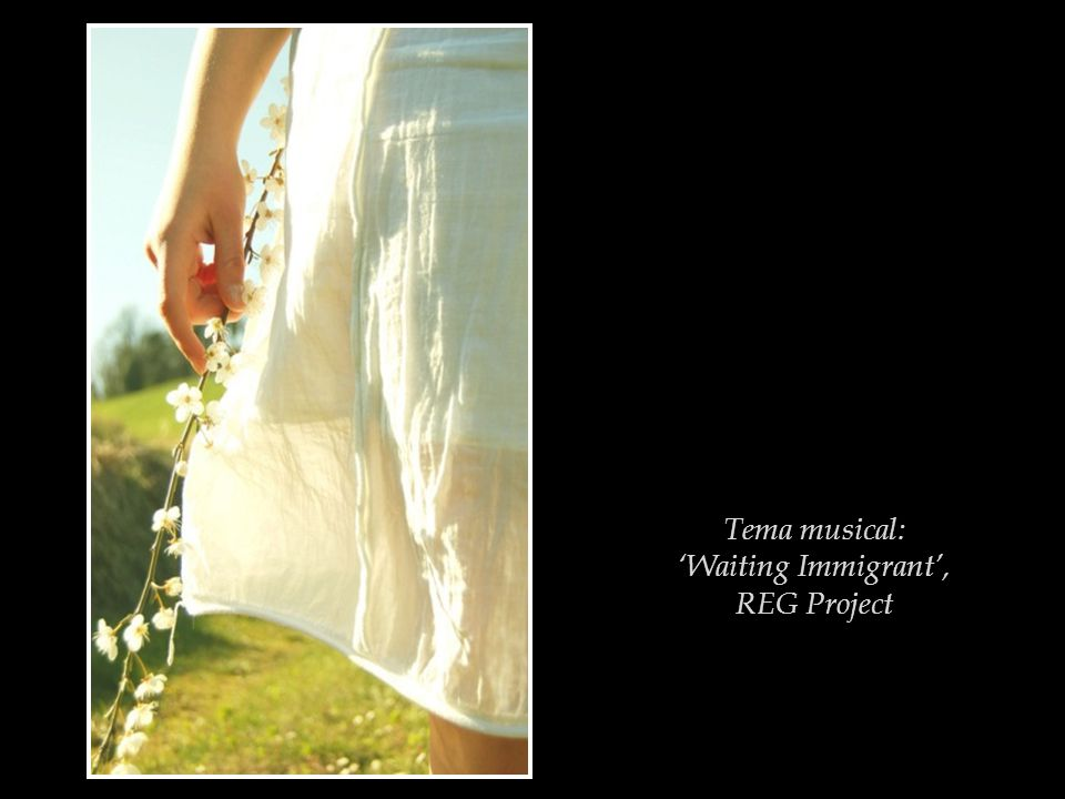 Tema musical: 'Waiting Immigrant', REG Project