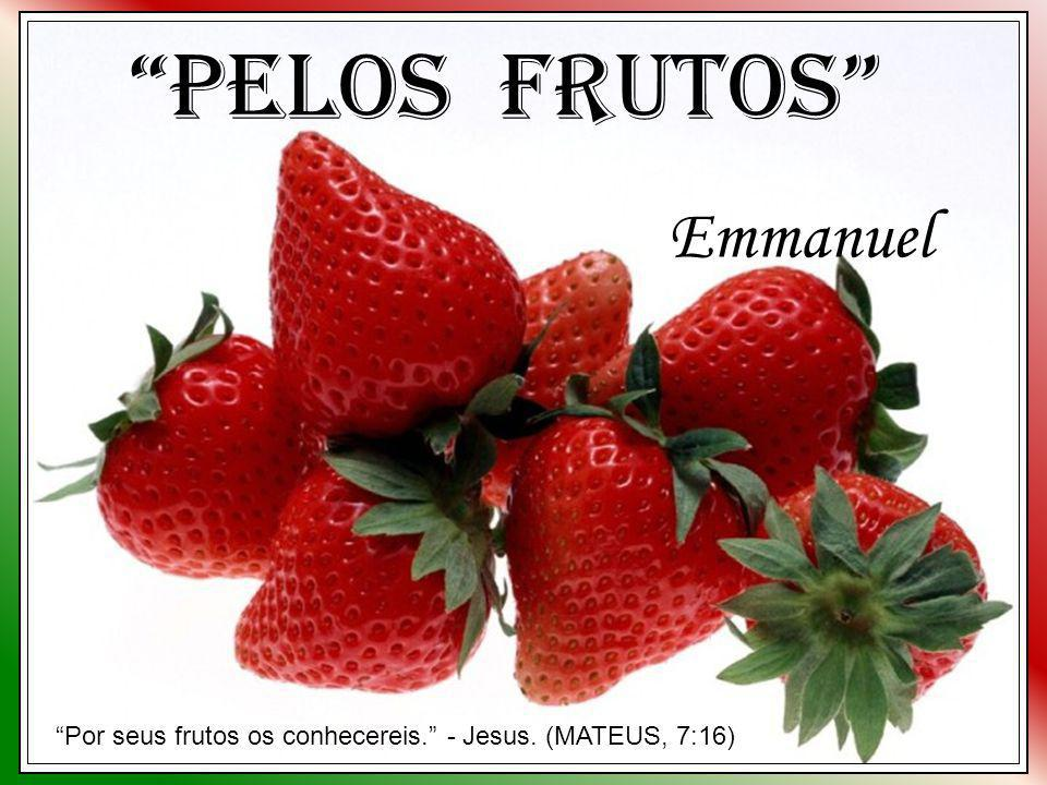 Pelos Frutos Emmanuel