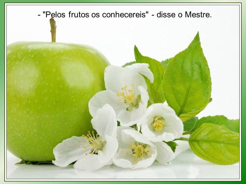 - Pelos frutos os conhecereis - disse o Mestre.