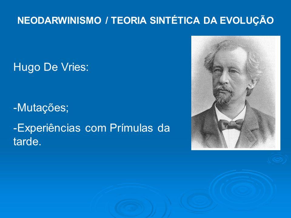 NEODARWINISMO / TEORIA SINTÉTICA DA EVOLUÇÃO