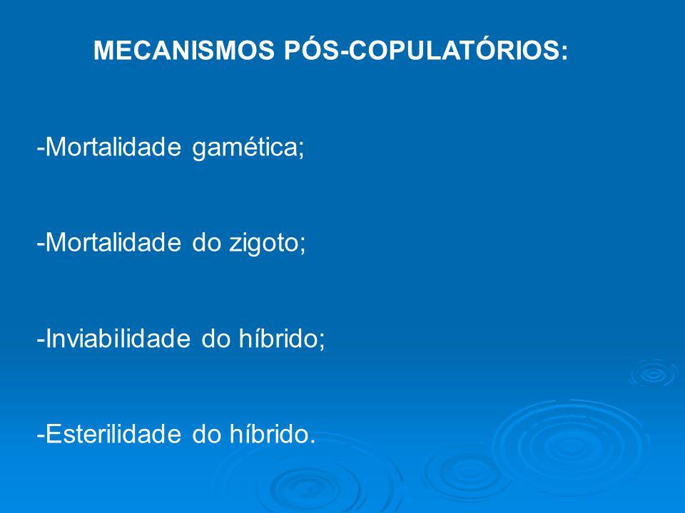 MECANISMOS PÓS-COPULATÓRIOS: